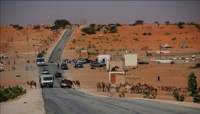 Photo of خواطر على طريق الأمل / الأستاذ محمد بتار الطلبة